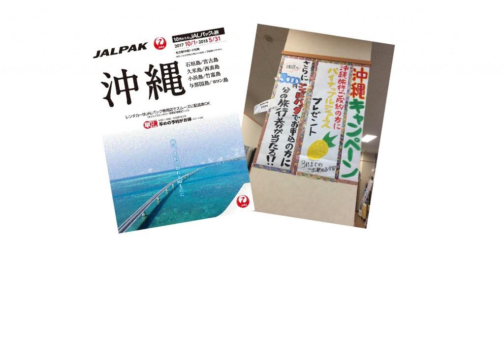 沖縄キャンペーン-001